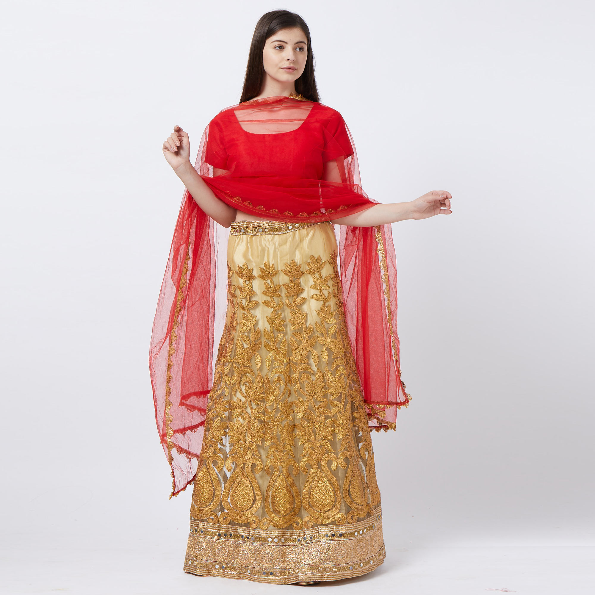 Stunning Mustard Yellow Colored Partywear Embroidered Netted Lehenga Choli