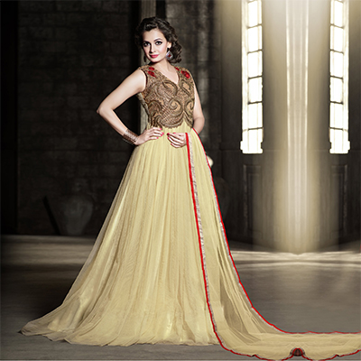 Soft Tan Net Gown