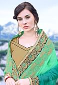 Elegant Shaded Green Heavy Embroidered Designer Saree