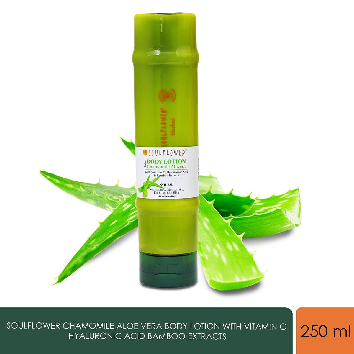 Soulflower Chamomile Aloe Vera Body Lotion with Vitamin C Hyaluronic Acid Bamboo Extracts, 250ml